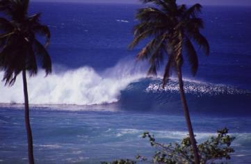 Playa Oeste Gallery, is the best in tropical surf art, local ...